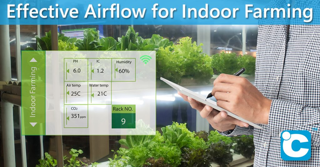Indoor farming requires proper airflow to control temperature and humidity.